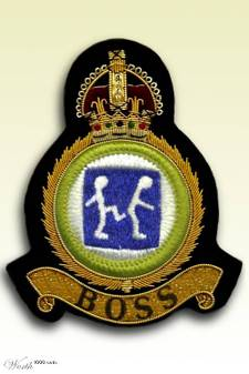 Boss_badge